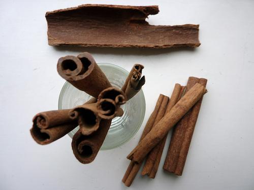 cinnamon - controlling fungus gnat larvae