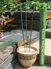 Incense Sticks to get rid of garden gnats