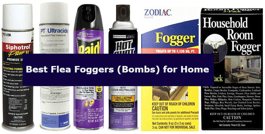 Flea Bomb Reviews 6 Best Flea Fogger Bombs To Kill Fleas In Your Home