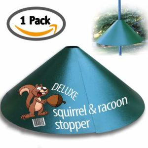 Deluxe Squirrel-Raccoon Stopper