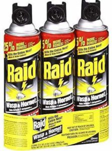 Raid Wasp and Hornet Killer