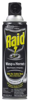 Raid Wasp and Hornet Killer 33 Spray