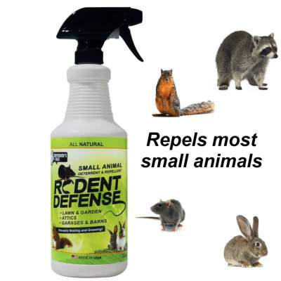 Best Rodent Repellent Reviews 2017 To Get Rid Of Mice