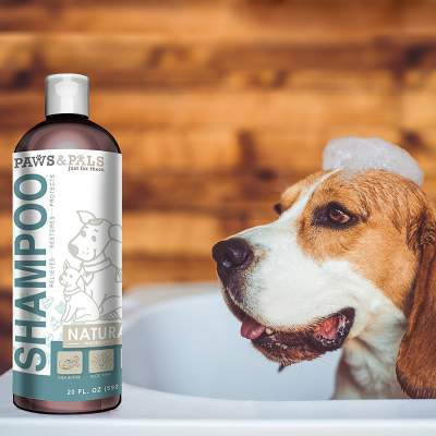 Oxgord Organic Oatmeal Dog Shampoo and Conditioner