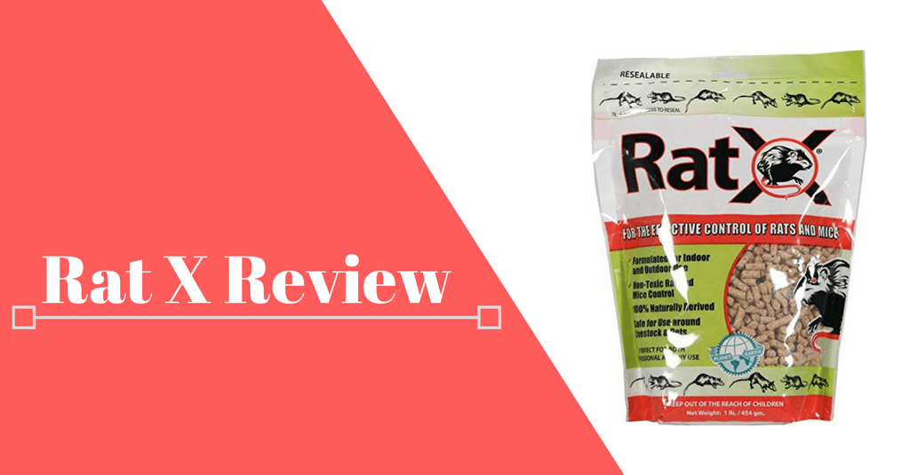 Rat-X-Reviews